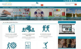 Expat Value - Site Wordpress