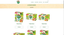 Andros - Kidifruit - Wordpress
